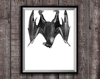 BAT ART Print, Gothic Decor, Animal Drawing, 8 x 10 Print, Black and White Print, Bedroom Wall Art, Halloween Decor, Cool Poster Gift Art