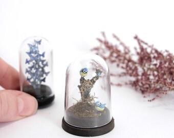 Taxidermy Blue Tit's Under Dome - 1/12th dollshouse miniature bird