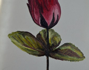 Flower Painting #5