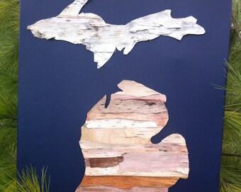 Birch Bark Canvas