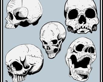 Skull Pack 2