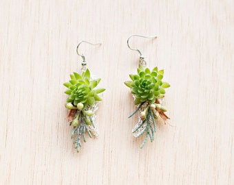 Fresh flower earrings, Sedum and Cypress
