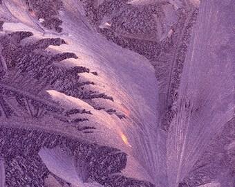 Frosty Window.