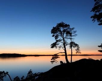 Midsummer silhouette in Sweden
