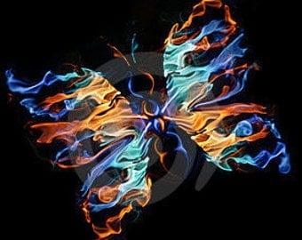 Fiery Butterflies
