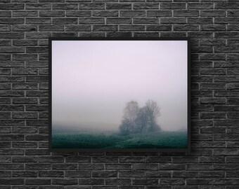 Misty Fields Photography - Misty Landscape Photo - Fog - Purple Tones - Nature Photography - Nature Wall Decor - Nature Photograph Print