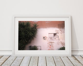Terracotta - Rustic Los Angeles Architecture Print - Cactus - Green and Pink - Peach - Palm Spring Photograph