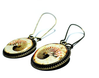Shell Earrings, Nautilus Earrings, Dangle Earrings, Handmade Jewelry, Nautilus Jewelry, Resin Earrings, Handmade Earrings, Beach Jewelry