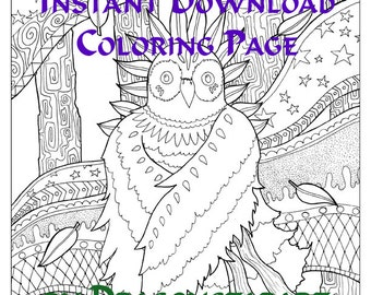 Owl Coloring Page Instant Download