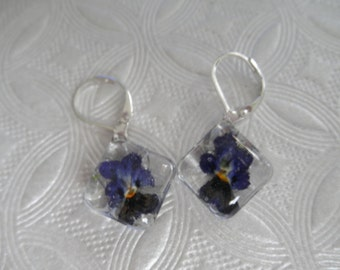 Purple, Yellow, Orange Pansy Pressed Flower Glass Square  Leverback Earrings-Symbolizes Loyalty-Nature's Art-Gifts Under 25