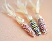 Miniature Indian Corn (One)