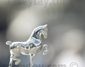 Silver Horse Trophy, Travel Photography, Gray, Silver, Horse Wall Art, Southwestern, Office Decor