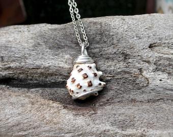 Seashell Necklace from Hawaii - Hawaiian Jewelry - Hawaii Necklace - Ocean Inspired Shell Jewelry made in Hawaii - Hawaiian Shell Pendant