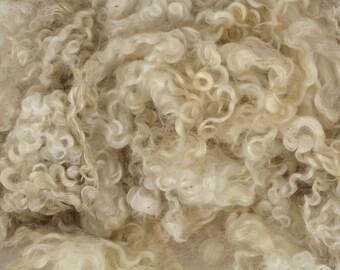 Wensleydale Locks Washed Wool Fleece Spinning and Felting Fiber White