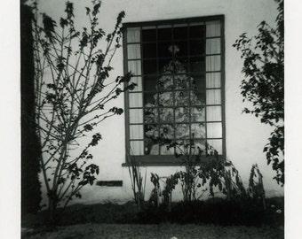 "Vintage Photo ""Christmas Night"" Holiday Tree Window Snapshot Antique Photo Old Black & White Photograph Found Paper Ephemera Vernacular - 6"