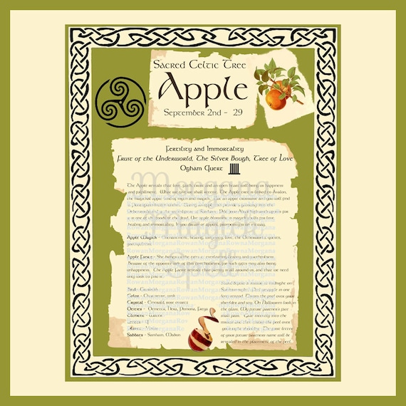APPLE CELTIC SACRED Tree - Digital Download, Book of Shadows Page,Grimoire, Scrapbook, Spells, White Magick, Wicca, Witchcraft, Herb Magic