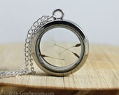 "Valentine's Day Sale - Dandelion Wishes - 30mm Glass and Silver Locket with 20"" Silver Chain"