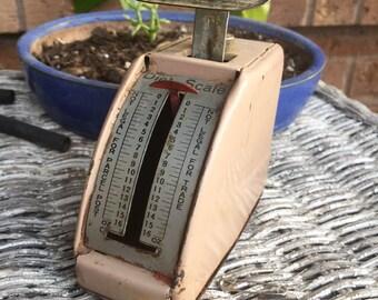 Little Vintage Pinkish Diet Scale