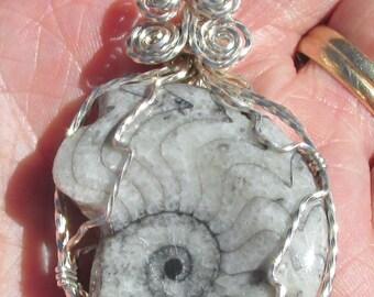 Fossil Ammonite pendant in Argentium Silver Wire