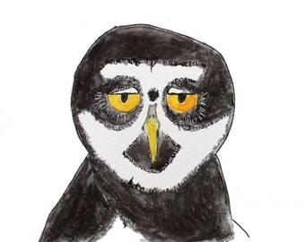 Detached Owl