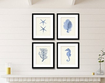 Coastal Print Set of 4, Nautical Art, Beach Decor Coastal Art, Sea Life Prints or Posters, Coral, Starfish, Serenity Blue Coastal Wall Art