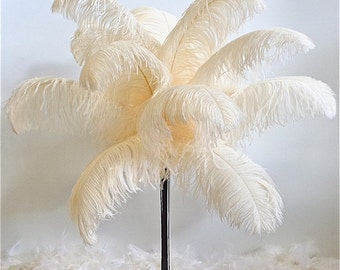 Ostrich Wing Plumes, Premium, 24-28 inch, SELECT your color, per TEN