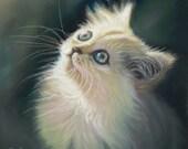 White Cat Art - Cat Lover - Fluffy Kitten - White Cat Gift