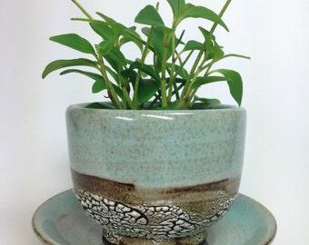 MADE TO ORDER, Succulent Planter, Ceramic Flower Pot, Pottery Planter, Green Cactus Pot, Stoneware Planter, Air Plant Planter, Crawl Glaze