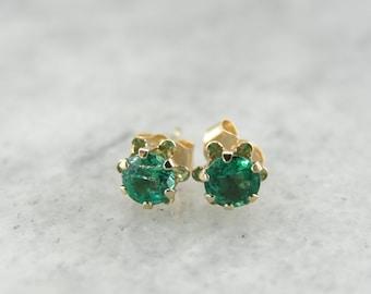 Buttercup Emerald Stud Earrings 8182KN-N