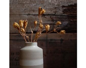vase : matte white stripe