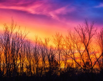 Sunset Silhouette Panoramic Photograph