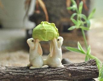 Bunny Bunnies and Cabbage Fairy Garden Terrarium Accessories Miniature Woodland Accessory Decoration Rabbit