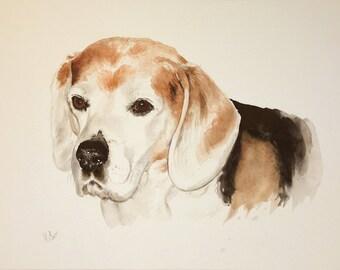 Custom pet portrait.Original watercolor painting.Dog portrait.Pet portrait.Pet portrait comission.Dog lover.Dog art