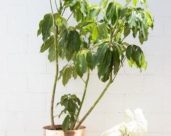 "16"" Spun Planter"