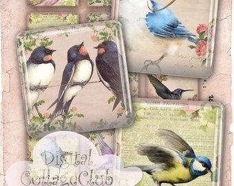 Shabby Chic Birds 1 Inch Digital Collage Sheet Digital Images for Jewelry Making 1 x 1 Scrabble Tile Square Tiles Instant Download