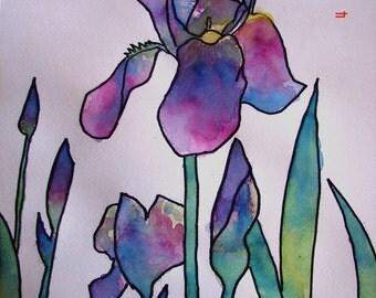Iris Flower Watercolour Painting, 'Rainbow Iris',Original Watercolour and Ink Painting, purple flower Iris Painting Art, kitchen, Australian