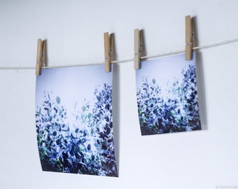 """Photography """"Bluecalyptus"""" - Limited edition - For wall or table decoration, as gift for birthday, christmas..."""
