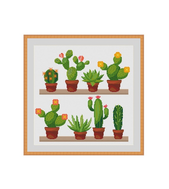 Cactus cross stitch, Succulent cross stitch, Cacti cross stitch, Blooming cactus, Cactus flower, Blooming cacti, Cactus shelfes, Xstitch PDF