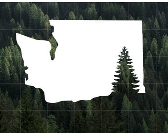 Washington State Evergreen Silhouette Vinyl Decal | Car Decal | MacBook Decal | Water Bottle Decal | Yeti Decal | PNW | Washington Evergreen