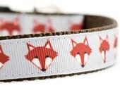 """Fox Dog Collar - Woodland Fox Collar - Fox Collar - 3/4"""" or 1"""" Wide"""