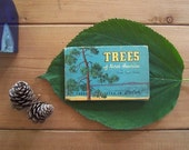 tiny tree book / vintage 1934 Trees of North America, pocket-size illustrated reference guide