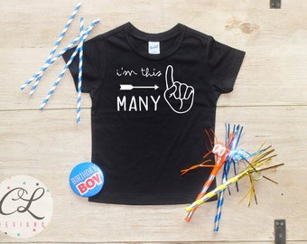 I'm This Many Birthday Boy Shirt / Baby Boy Clothes 1 Year Old Outfit First Birthday TShirt 1st Cake Smash Outfit One Bodysuit Toddler 113