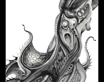 Vampire Squid -- Print