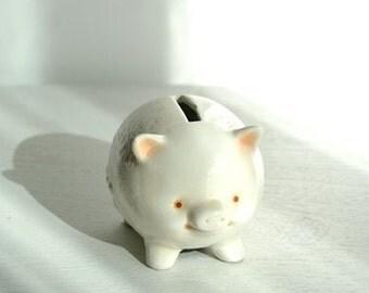 Pig piggy bank ceramic.
