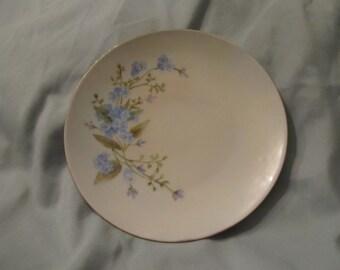 J and C Bavaria hand painted china plate.