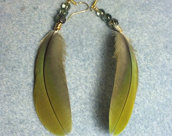 Olive green red fronted macaw feather earrings adorned with green Czech glass beads.