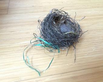 Cute real birds nest decorative