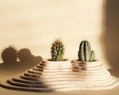 Little Mexico Pot Holder (for 2 vases), landscape realized with plywood layers, zen garden, centerpiece