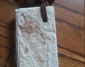 stories of the Ancestors real fossil fish pendant