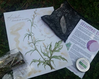 Mugwort - Artemesia vulgaris Plant Spirit Offering - Collection of items to deepen your connection to dream enhancing Mugwort